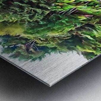 Jardim Tropical Monte Palace 5 Metal print