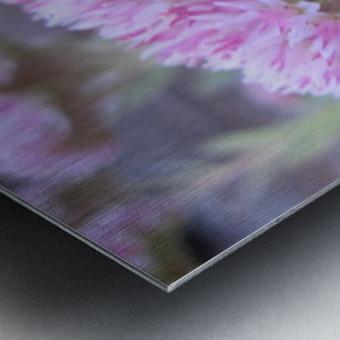 Flower (43) Metal print