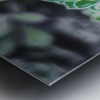 Sweetyplant Metal print