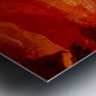 A6BE8FEC E5F2 4813 8F9D 537604E38534 Metal print