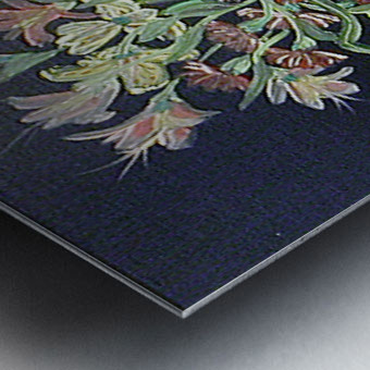 Flower Study 4 Metal print