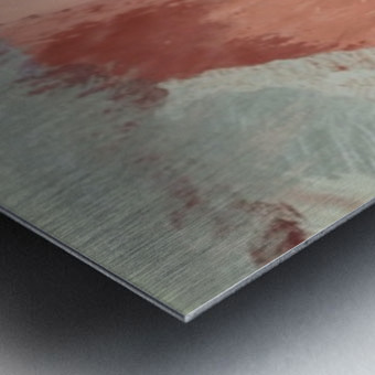 AB8A0D60 C8F0 4620 9078 CF5B766F75CD Metal print