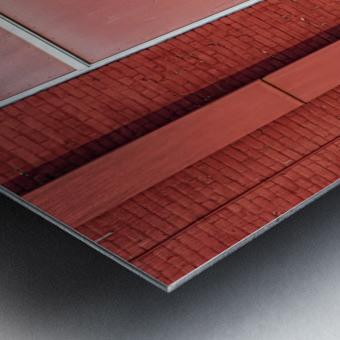 Seeing Red... Metal print