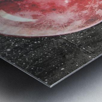 Moonalicious Metal print