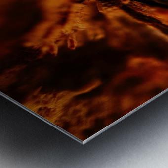 Abstract Macro Nature Photography 110 Metal print