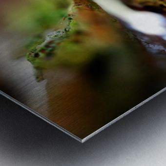 Abstract Macro Nature Photography 95 Metal print