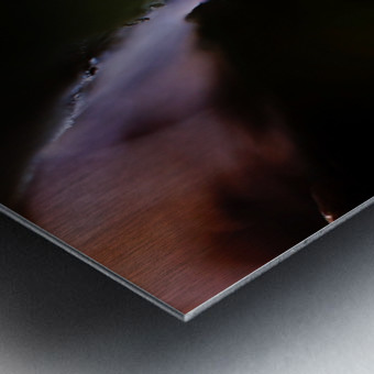 Abstract Macro Nature Photography 13 Metal print