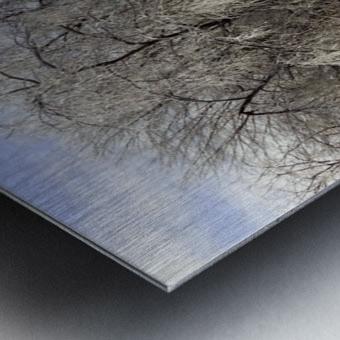 Matin glacé- Iced morning Metal print