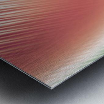 COOL DESIGN  (65) Metal print