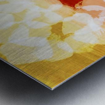 975808E0 04FC 4853 B93F 86DFCA9A8BA8 Metal print