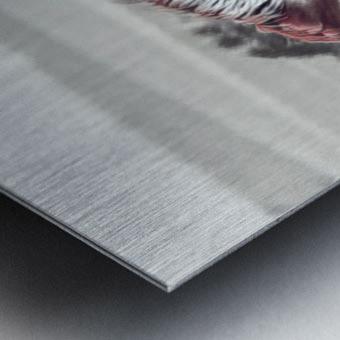 fields of freedom Metal print
