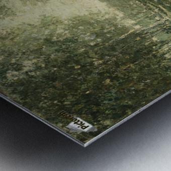 Nympfes on the lake Metal print