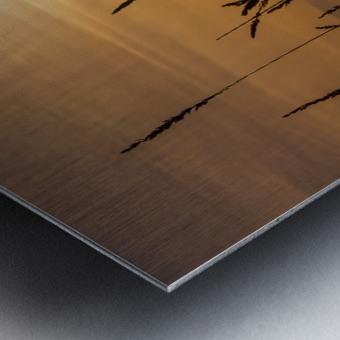 Colebrook Afternoon Metal print
