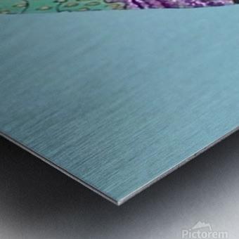 Delphinus  Metal print