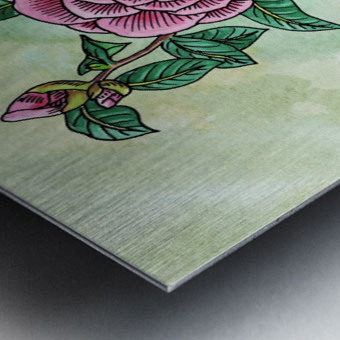 Botanical Watercolor Japanese Camellia Flower  Metal print