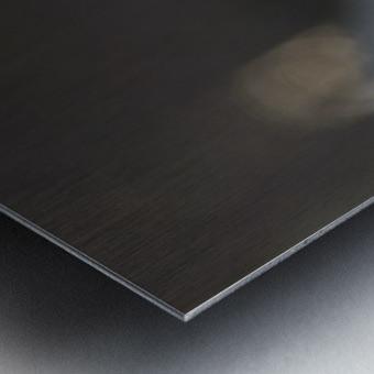 _LAB5536s Metal print