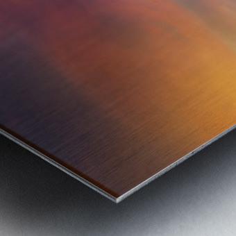 DSC_2298.sky Metal print