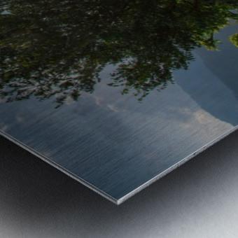 DSC_8529 Metal print