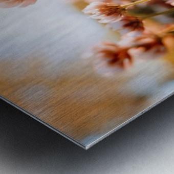 1564120021459~2 Metal print
