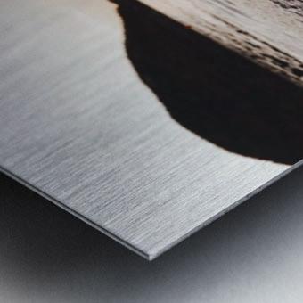 20190728_145100 Metal print