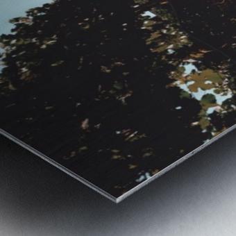 20190730_183023 Metal print