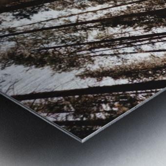 20190802_182121 Metal print