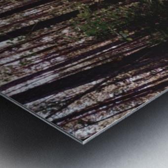 20190802_182317 Metal print
