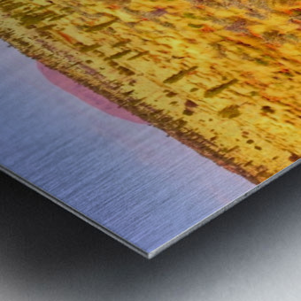 Dune Landscape - Central Australia Metal print