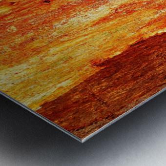 Murray Gum Tree Bark 2 Metal print