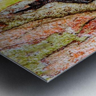 Aussie Gum Tree Bark - 9 Metal print