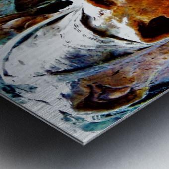 Face to Face Metal print