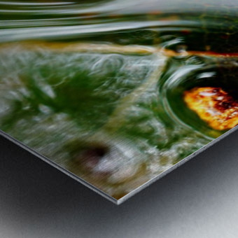Macro Raindrop Photography Art 45 Metal print
