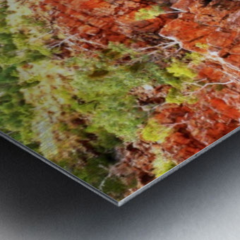 Waterhole - Ormiston Gorge Metal print