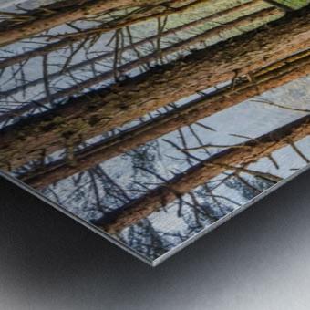 memory lane Metal print