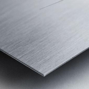 Prendre le large 2 Metal print