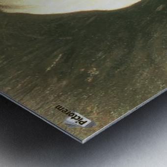 Nymphe dans les roseaux Metal print