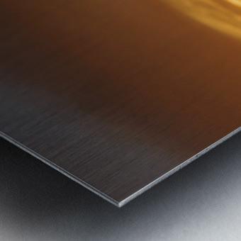 FireGold Metal print