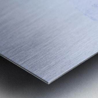 _TE89656 Metal print