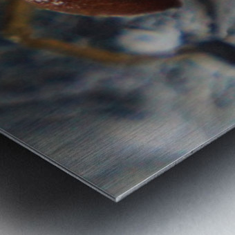 Spider treading water Impression metal
