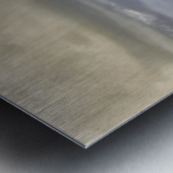 Commited Metal print