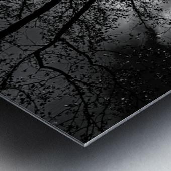 _1150920_1572477007.8786 Metal print