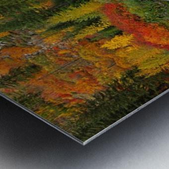 autmn daze Metal print