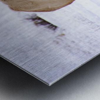 Wheres The Grass Metal print