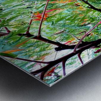 Rasta Leaves Metal print