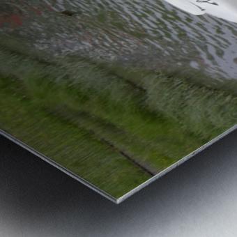 Amphicar model Unique amphibious model car Metal print