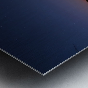 Starlit Pond Metal print