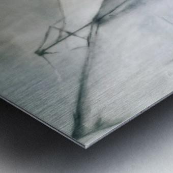 IMG_Dec162019at84133AM Metal print