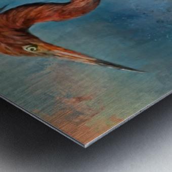 Painted Reddish Egret Metal print