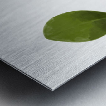 4 Leaves Metal print
