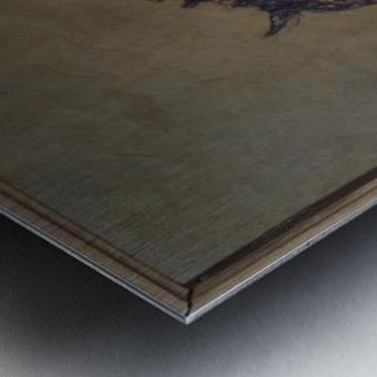 L ane Metal print